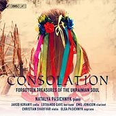 Consolation: Forgotten Treasures of the Ukranian Soul by Various Artists