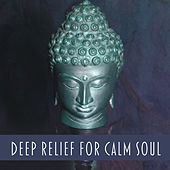 Play & Download Deep Relief for Calm Soul – Music for Meditation, Deep Focus, Buddha Music, Zen Meditation, Yoga Training, Calming Sounds by The Buddha Lounge Ensemble | Napster