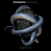 How Did You Love (Remixes) von Shinedown