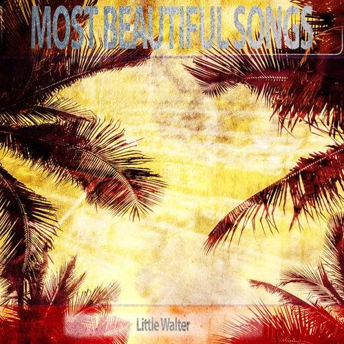 Most Beautiful Songs de Little Walter