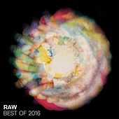 Best of Raw 2016 by Various Artists