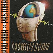 Cosmossoma by Pastora