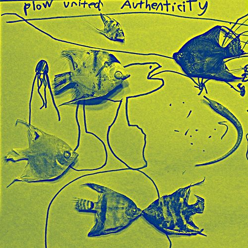Authenticity by Plow United