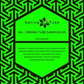 Spring Tube Sampler 05 by Various Artists