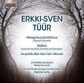 Tüür: Peregrinus ecstaticus - Le poids des vies non vécues - Noēsis by Various Artists