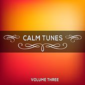 Play & Download Calm Tunes, Vol. 03 by Various Artists | Napster