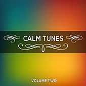 Play & Download Calm Tunes, Vol. 02 by Various Artists | Napster