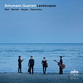 Landscapes by Schumann Quartett