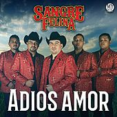 Play & Download Adiós Amor by Sangre Felina | Napster