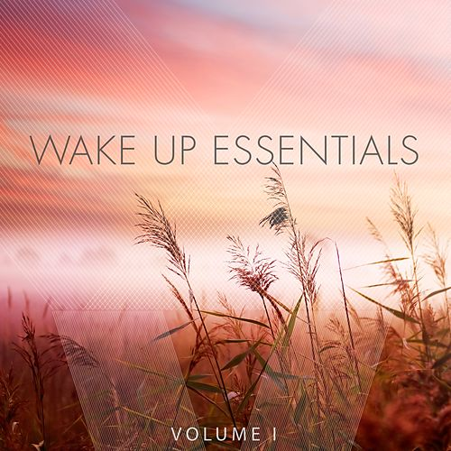 Wake Up Essentials, Vol. 1 (Wonderful Get Up Tunes) by Various Artists