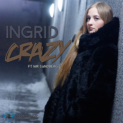 Crazy (feat. Mr Sandberg) by In-Grid
