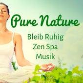 Play & Download Pure Nature - Bleib Ruhig Zen Spa Musik für Konzentration Steigern Geführte Meditation und Spirituelles Training by Radio Meditation Music   Napster