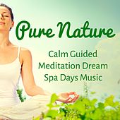 Play & Download Pure Nature - Calm Guided Meditation Dream Spa Days Music to Increase Brain Power Spiritual Training and Zen Style by Radio Meditation Music | Napster