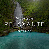 Play & Download Musique Relaxante Nature by Various Artists | Napster