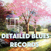 Detailed Blues Records von Various Artists