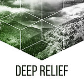 Play & Download Deep Relief – Nature Sounds for Relaxation, New Age Piano Music, Birds Songs, Calming Melodies, Pure Mind, Flute Music, Deep Sleep by Sounds of Nature Relaxation | Napster