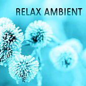 Relax Ambient Therapy - Relaxation New Age Music by Relaxation - Ambient