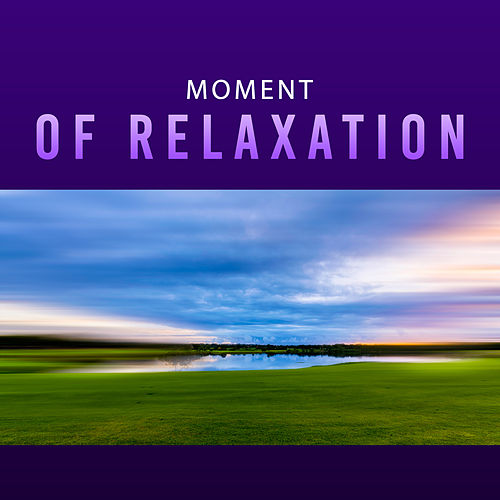 Play & Download Moment of Relaxation – Healing Sleep, Soothing Guitar, Piano Music, Relaxation Sounds, Deep Relief, Relaxed Mind by Relax - Meditate - Sleep | Napster