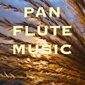 Pan Flute Music: Meditation Zen Music & Sounds of Nature for Autogenic Training and Yoga by Nature Sounds Nature Music