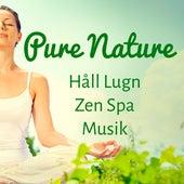 Pure Nature - Håll Lugn Zen Spa Musik för Öka Hjärnkapacitet Vägledd Meditation och Andlig Träning by Radio Meditation Music