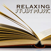 Relaxing Study Music - Meditation Music & Relaxing Songs for Yoga, Spa, Sleep, Study, Healing and Meditation by Study Music