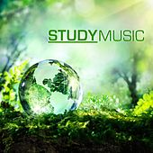 Study Music - Studying Music & Concentration Music for School and University Exam Study, Brain Stimulation, Improve Memory and Concentration by Study Music