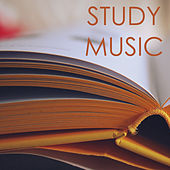 Study Music Playlist - Best Background Studying Songs by Relaxation Study Music