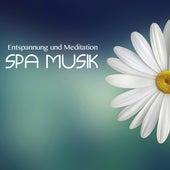 Entspannung und Meditation Spa Musik by Meister der Entspannung und Meditation