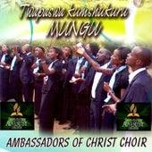 Play & Download Twapaswa Kumshukuru Mungu by Ambassadors Of Christ Choir   Napster