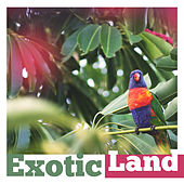 Play & Download Exotic Land – Chillout Music, Holiday Time, Sea Sounds, Deep Relax, Beach Party, Crazy Fun by Today's Hits! | Napster