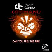 Play & Download Can You Feel the Fire by Dany Cohiba | Napster