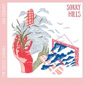 Sorry Hills by The Cactus Channel