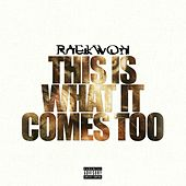 This Is What It Comes Too by Raekwon