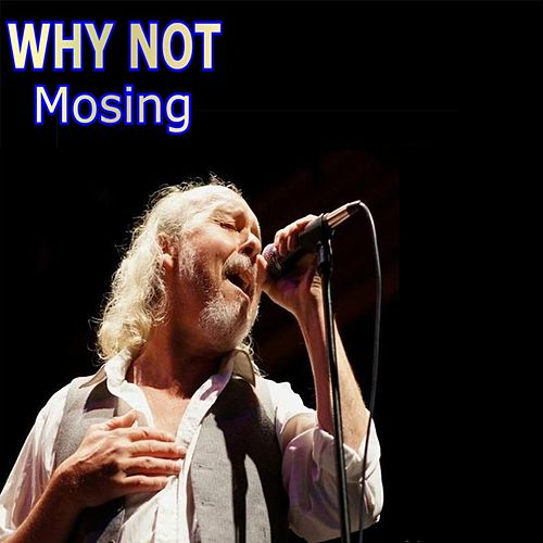 Play & Download Mosing by Why Not | Napster