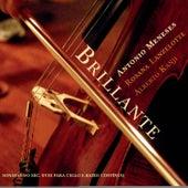 Play & Download Brillante by Alberto Kanji   Napster