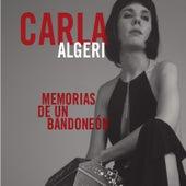 Memorias de un Bandoneón by Carla Algeri