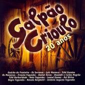 Galpão Crioulo 20 Anos by Various Artists