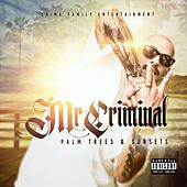 Play & Download Palm Trees and Sunsets by Mr. Criminal | Napster