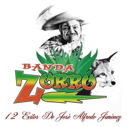 Play & Download 12 Exitos de José Alfredo Jiménez by Banda Zorro | Napster