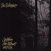Setting The Woods On Fire by The Walkabouts