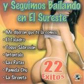 Play & Download Y Seguimos Bailando En El Sureste by Los Caracoles | Napster