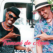 Play & Download Tsunami do Amor by João Suplicy | Napster