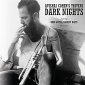 Dark Nights by Avishai Cohen (bass)