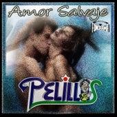 Play & Download Amor Salvaje by Banda Pelillos | Napster