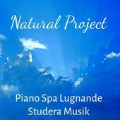 Natural Project - Piano Spa Lugnande Studera Musik för Djup Sömn Yogaövningar med Hälsa Mental Övning Mjuk Natur Ljud by Meditation Music Guru
