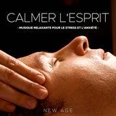 Calmer l'Esprit: Musique Relaxante pour le Stress et l'Anxiété by Various Artists