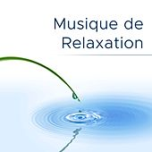 Musique de Relaxation by Various Artists