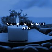 Musique Relaxante 2016 - Profiter de cet instant afin de vous évader et de relâcher toute la pression que vous accumulez. by Various Artists