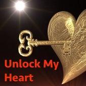 Unlock My Heart von Various Artists
