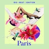 Big Beat Ignition: Paris di Various Artists